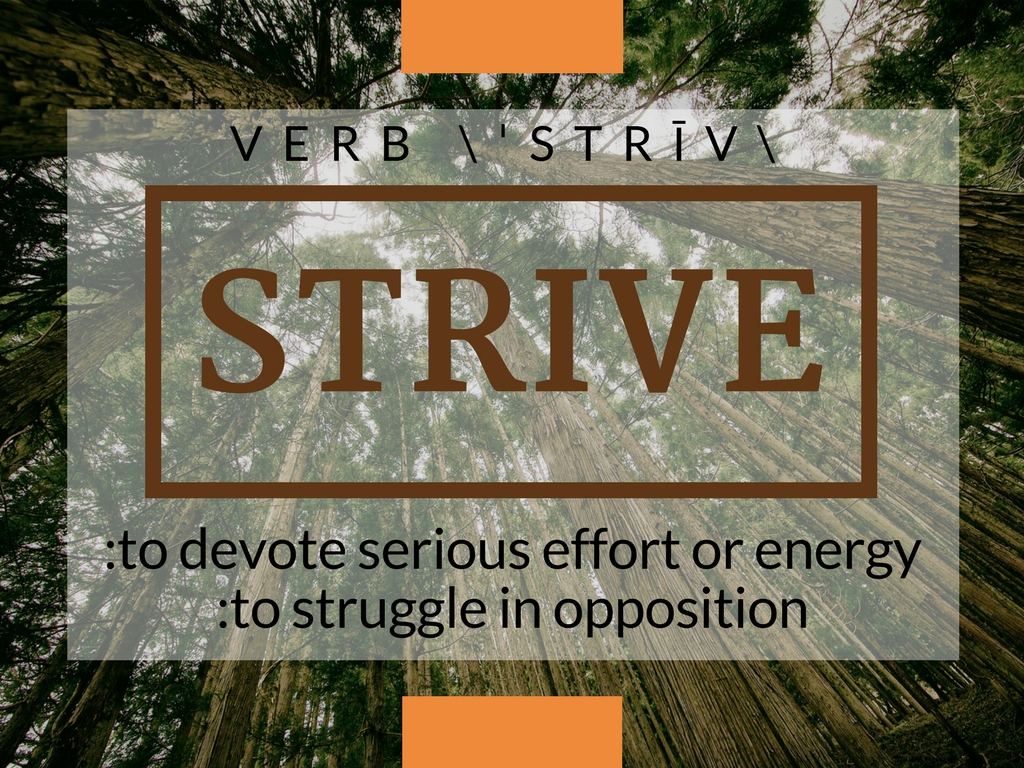 Strive Definition